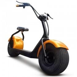 der Roller elektrisch CityCoco GOLD 60v ROLLER