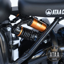 Citycoco ATAA Matriculable Doppel-wechselbarer Akku ROLLER