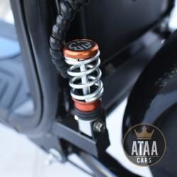 Citycoco ATAA Matriculable herausnehmbaren Akku ROLLER