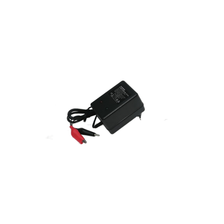 Externes Ladegerät für 12V 1000AH Batterien aus Blei